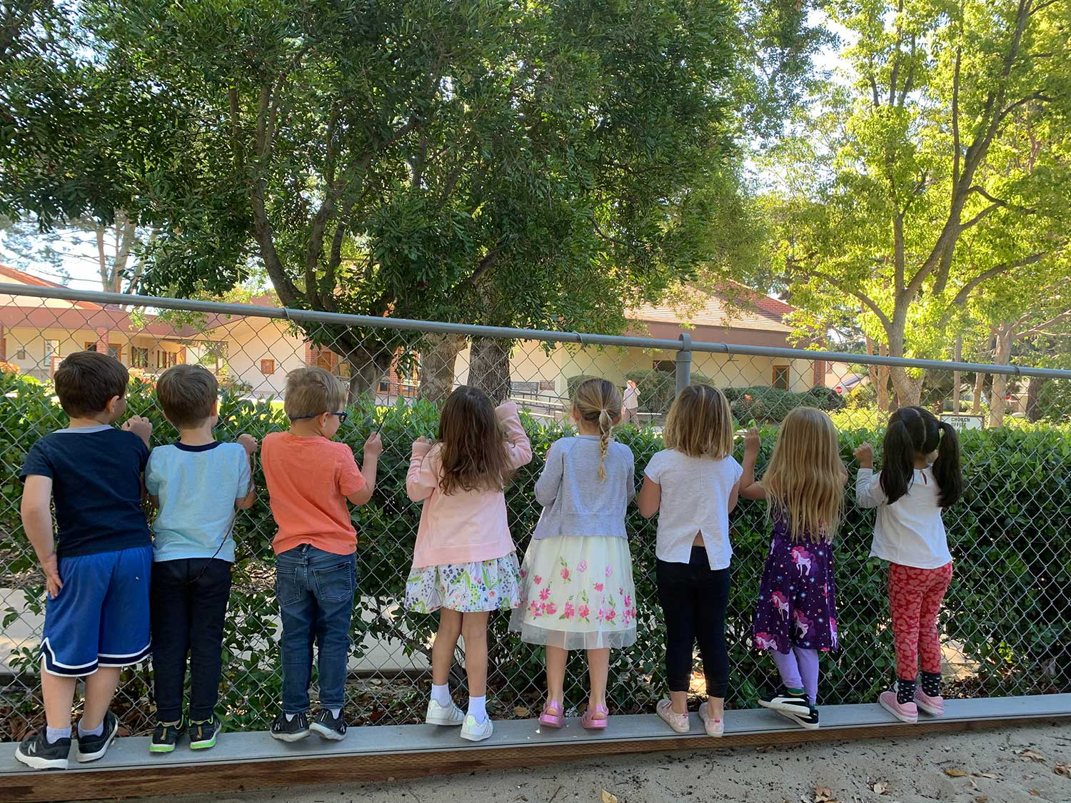 Children Aligned at a Fence Peeking Out