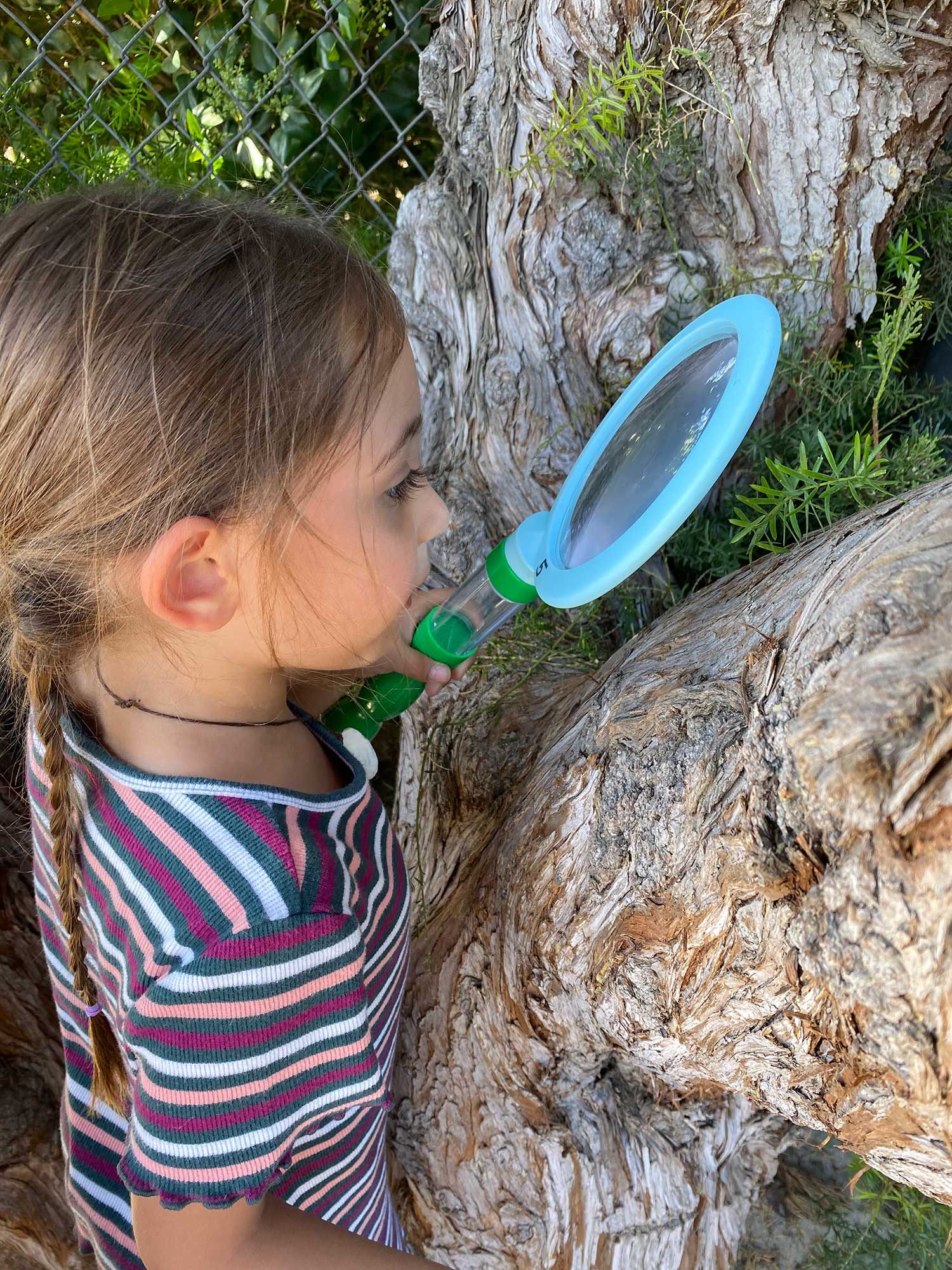Girl Examining Tree with Magnifying Glass